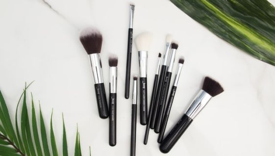 Various makeup brushes with two leaves in the corners